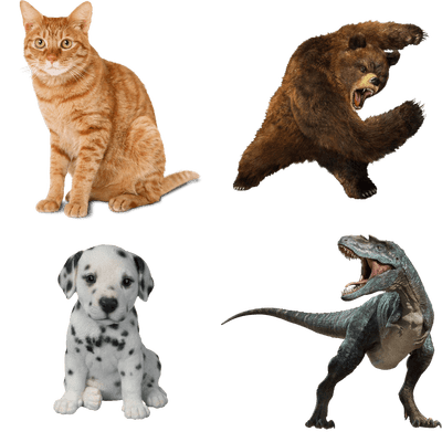 Free Transparent PNG Images, Stickers & No Background