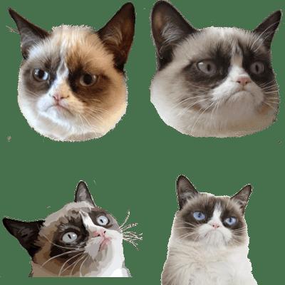 57 Best Meme Transparent - Duper