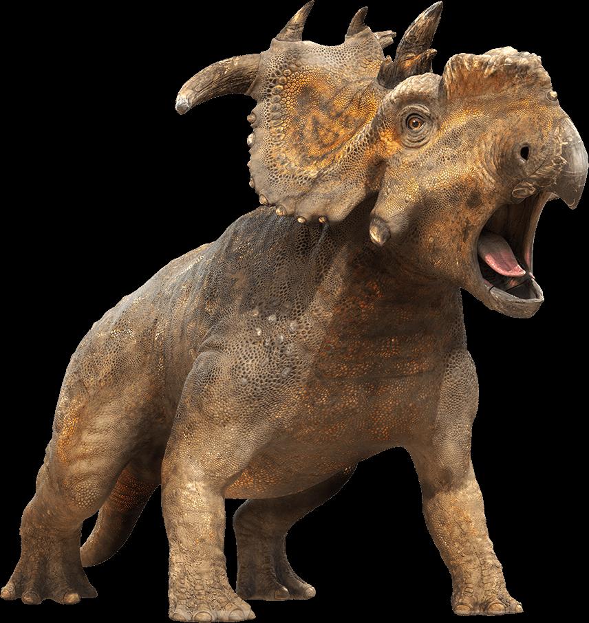 Dinosaurio De Cerca Png Transparente Stickpng Es una página echa para todo un fan de dinosaurios, con las mejores fotos e información.no olviden. stickpng