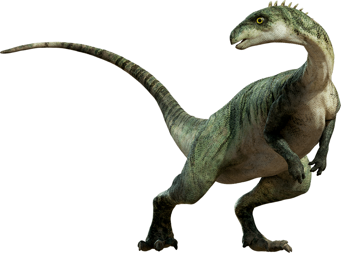 Dinosaur Standing Transparent Png Stickpng Tyrannosaurus triceratops aucasaurus dinosaur, dinosaur. stickpng