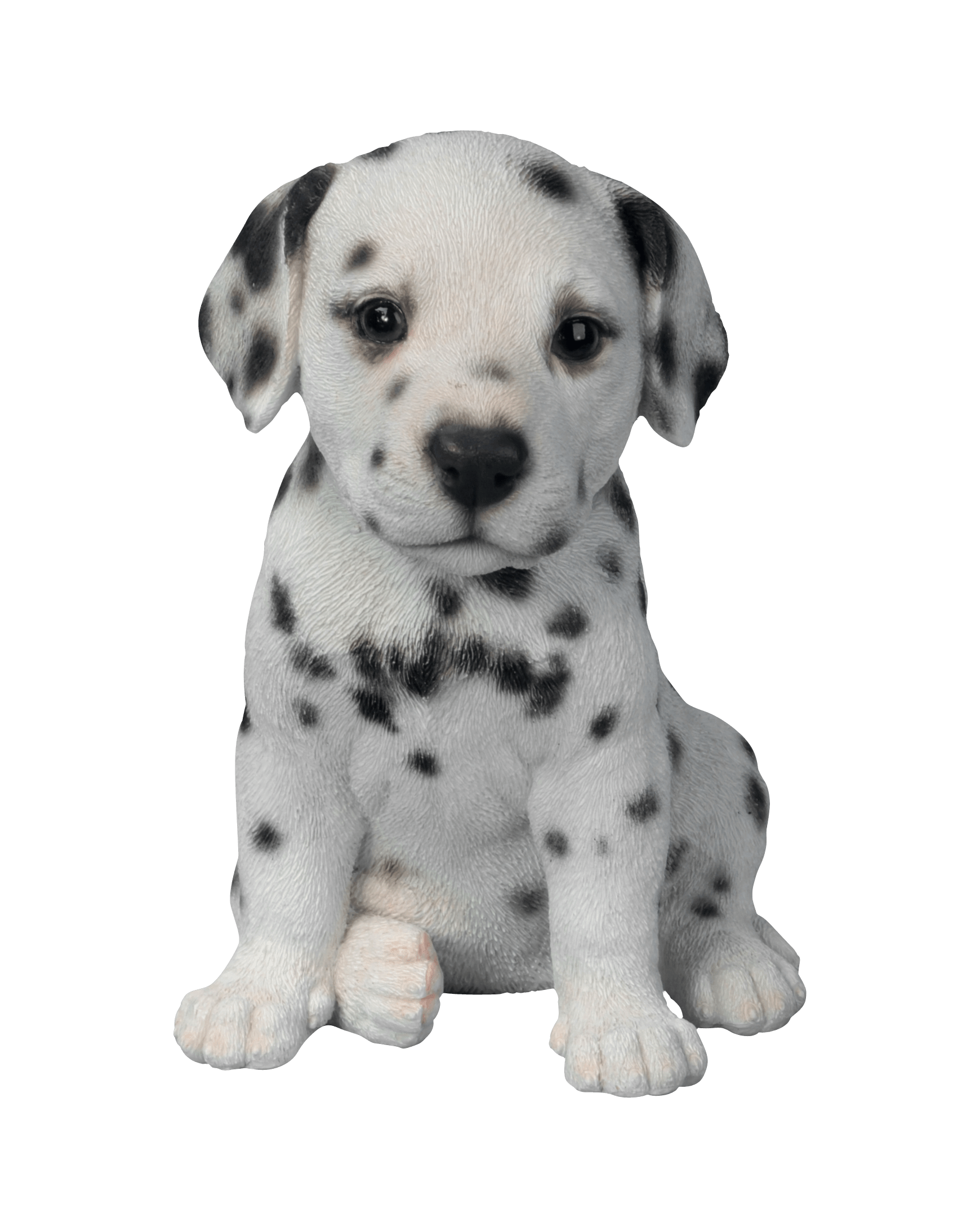 Cute Puppies transparent PNG StickPNG