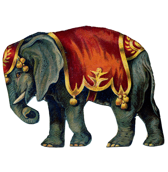 http://www.stickpng.com/assets/images/580b57fbd9996e24bc43bbee.png Circus Animals Png