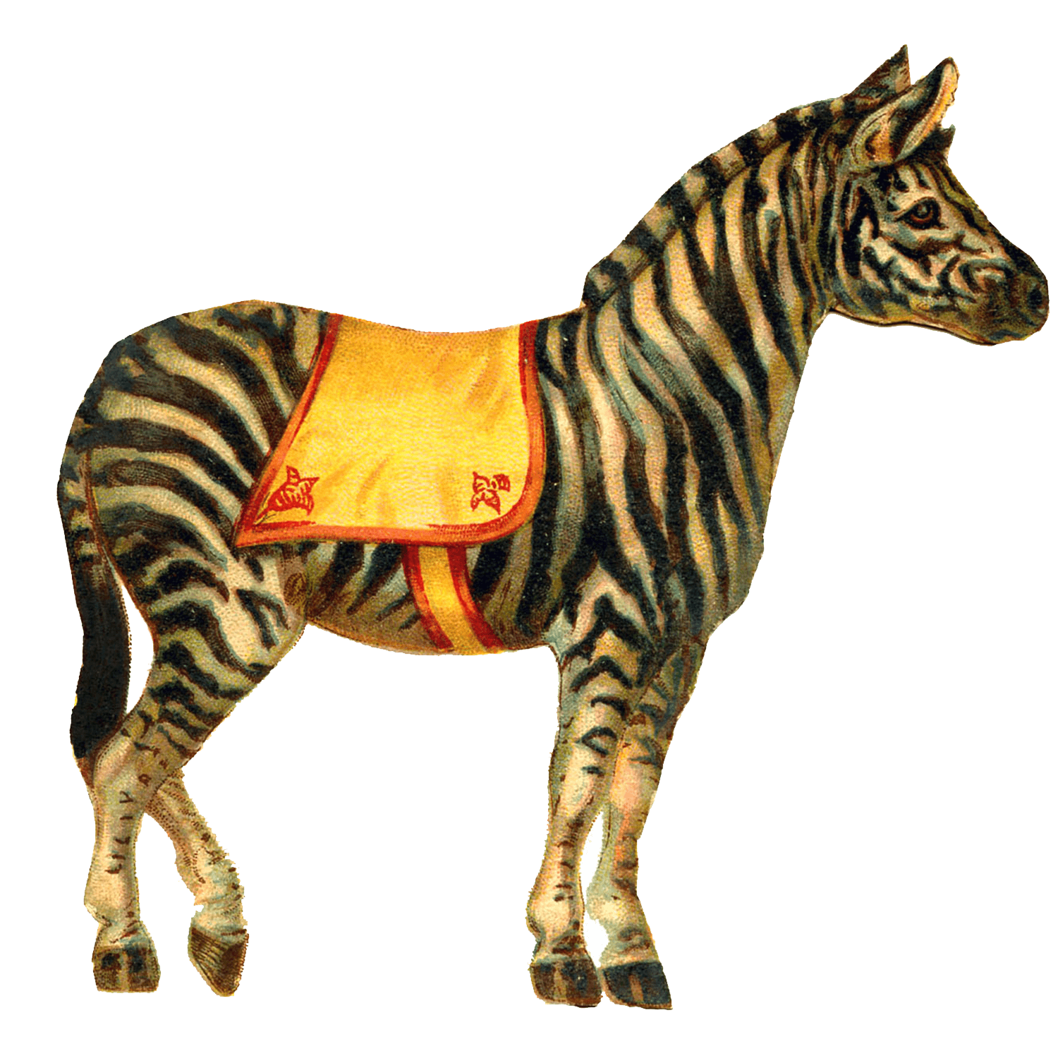 http://www.stickpng.com/assets/images/580b57fbd9996e24bc43bd03.png Circus Animals Png