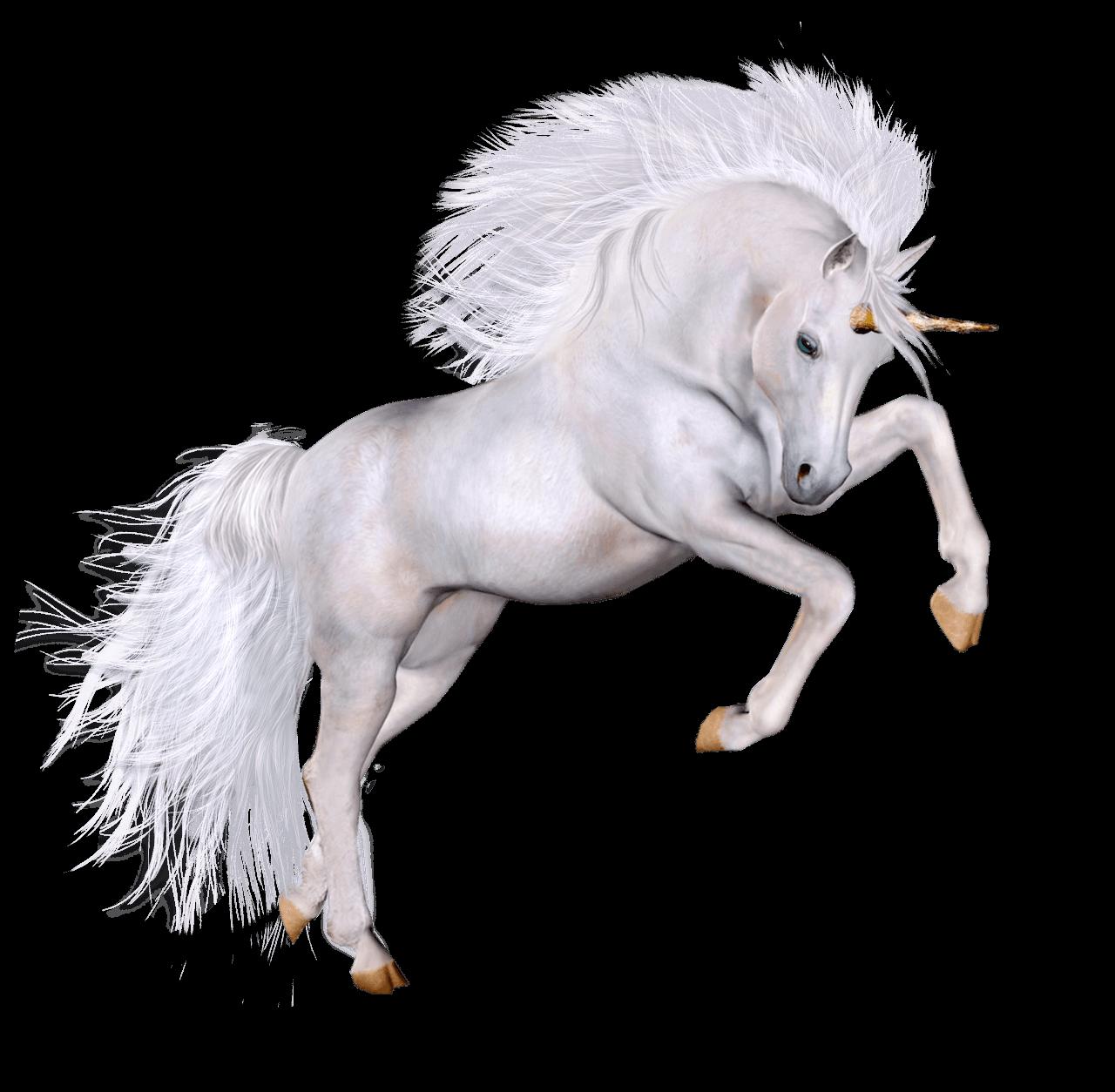 unicorns transparent png images stickpng