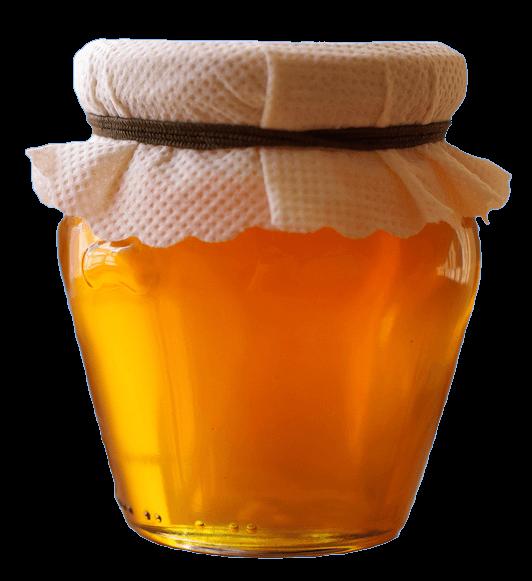 Honey Pot transparent PNG - StickPNG