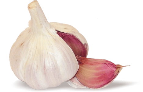 Garlic Wedge transparent PNG - StickPNG