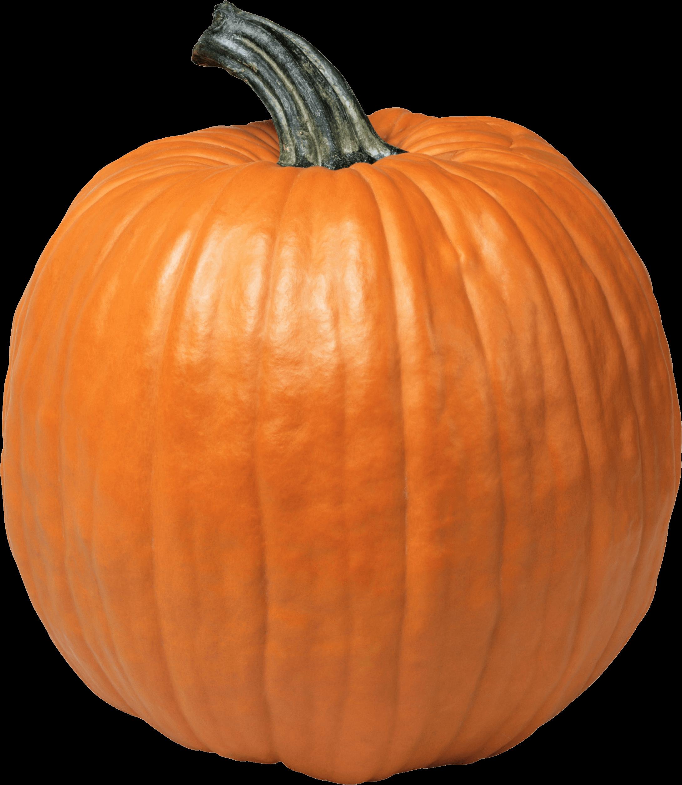 Single Pumpkin Transparent PNG