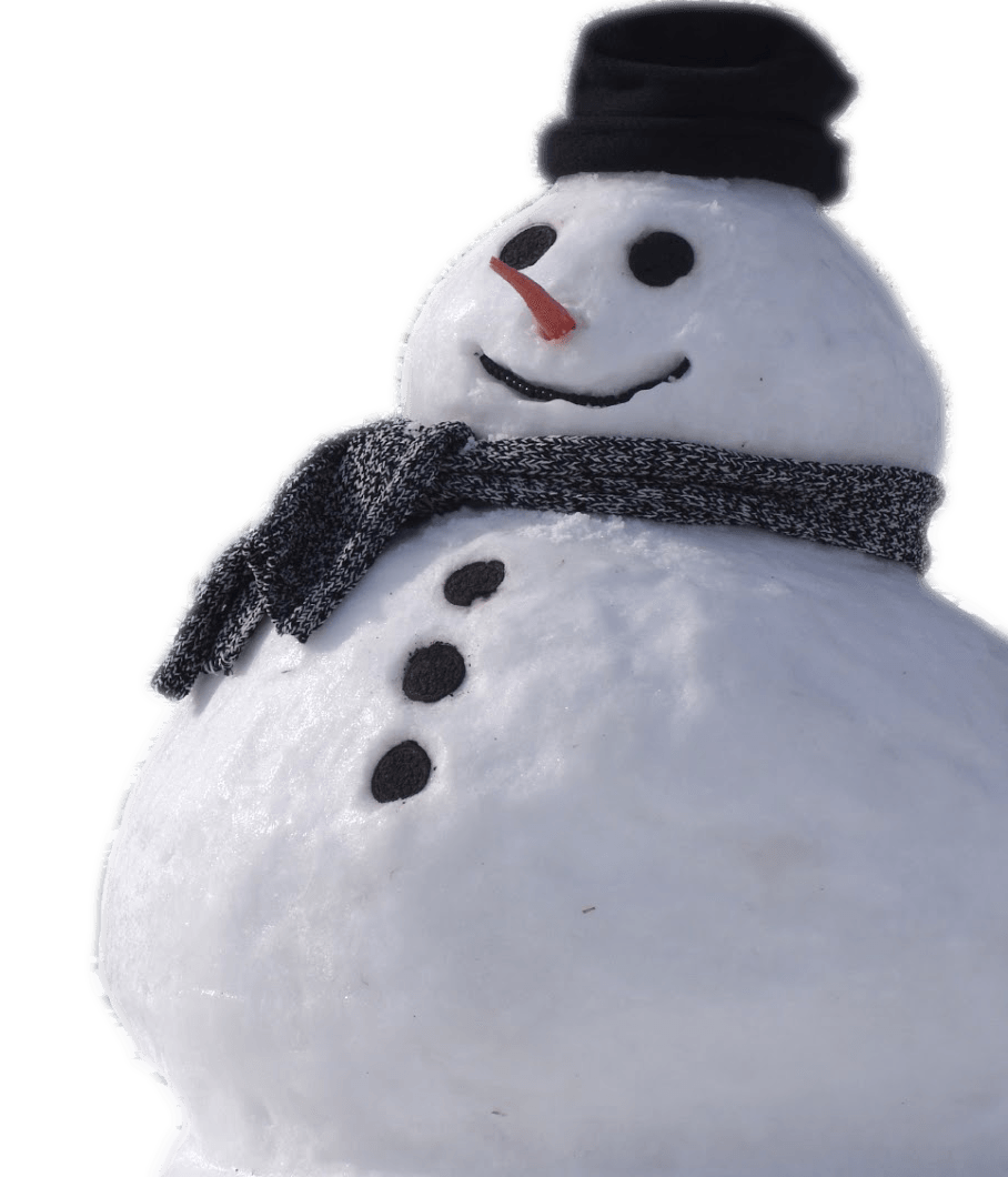 Snowman Real Transparent PNG