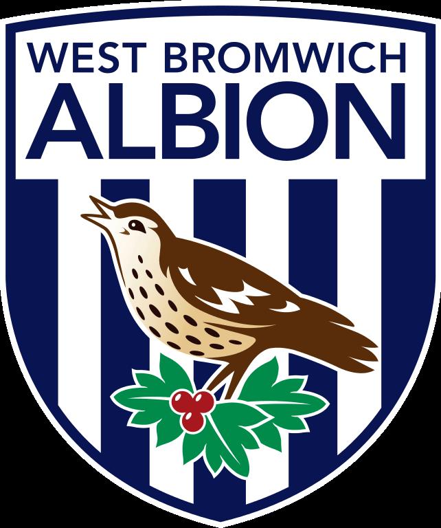 Výsledek obrázku pro west bromwich albion logo png