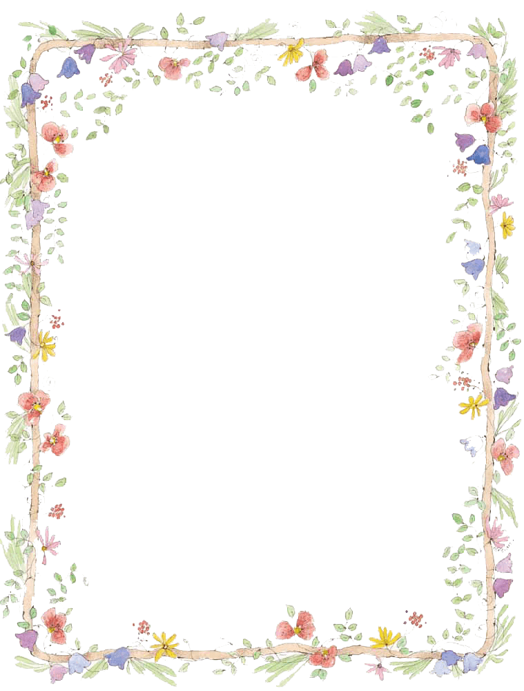 Flowers Frame Colours transparent PNG - StickPNG