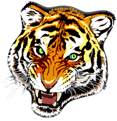 tiger tattoo colour transparent png stickpng. Black Bedroom Furniture Sets. Home Design Ideas
