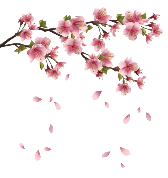 Spring Flowers Branches transparent PNG - StickPNG