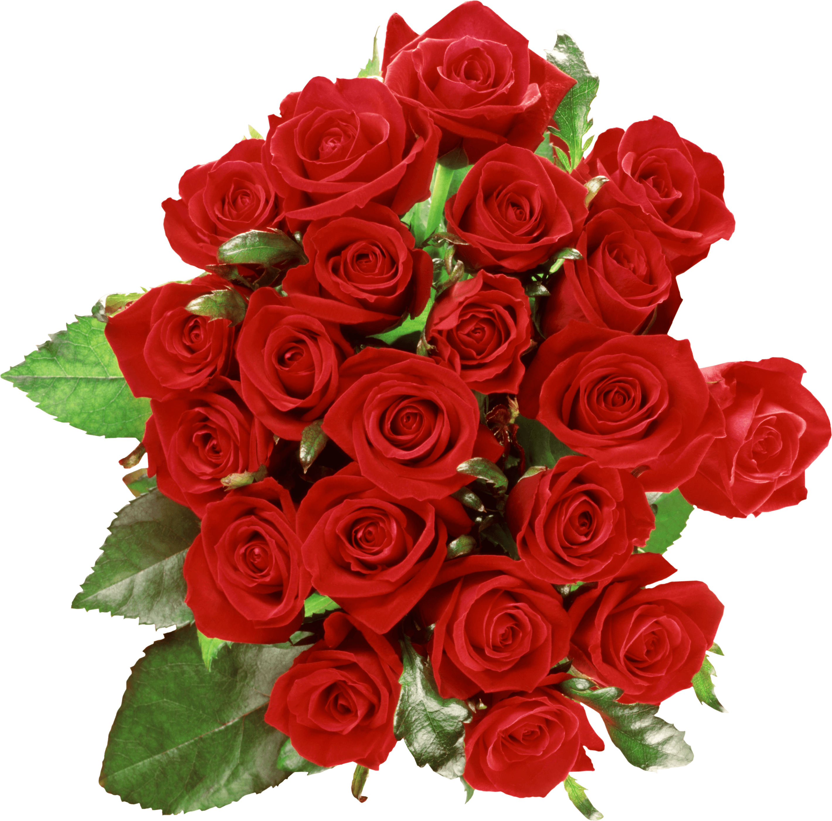 Bouquet Of Roses transparent PNG - StickPNG