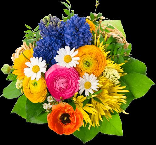 Image Gallery transparent bouquet