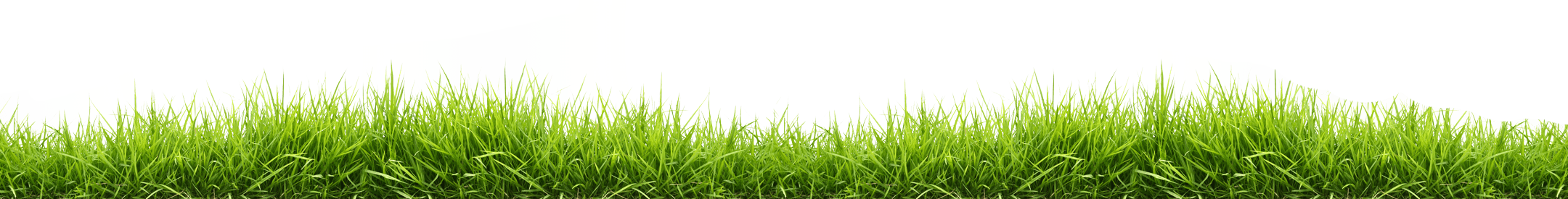 How To Make Grass Lines