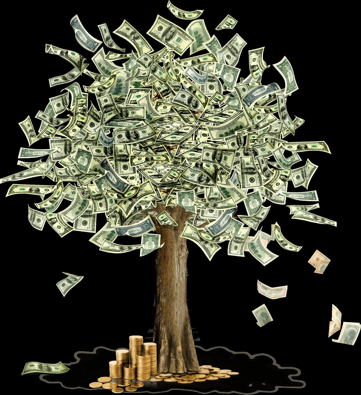 Money Tree Transparent PNG