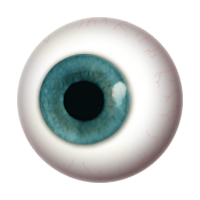Eye Globe transparent PNG - StickPNG