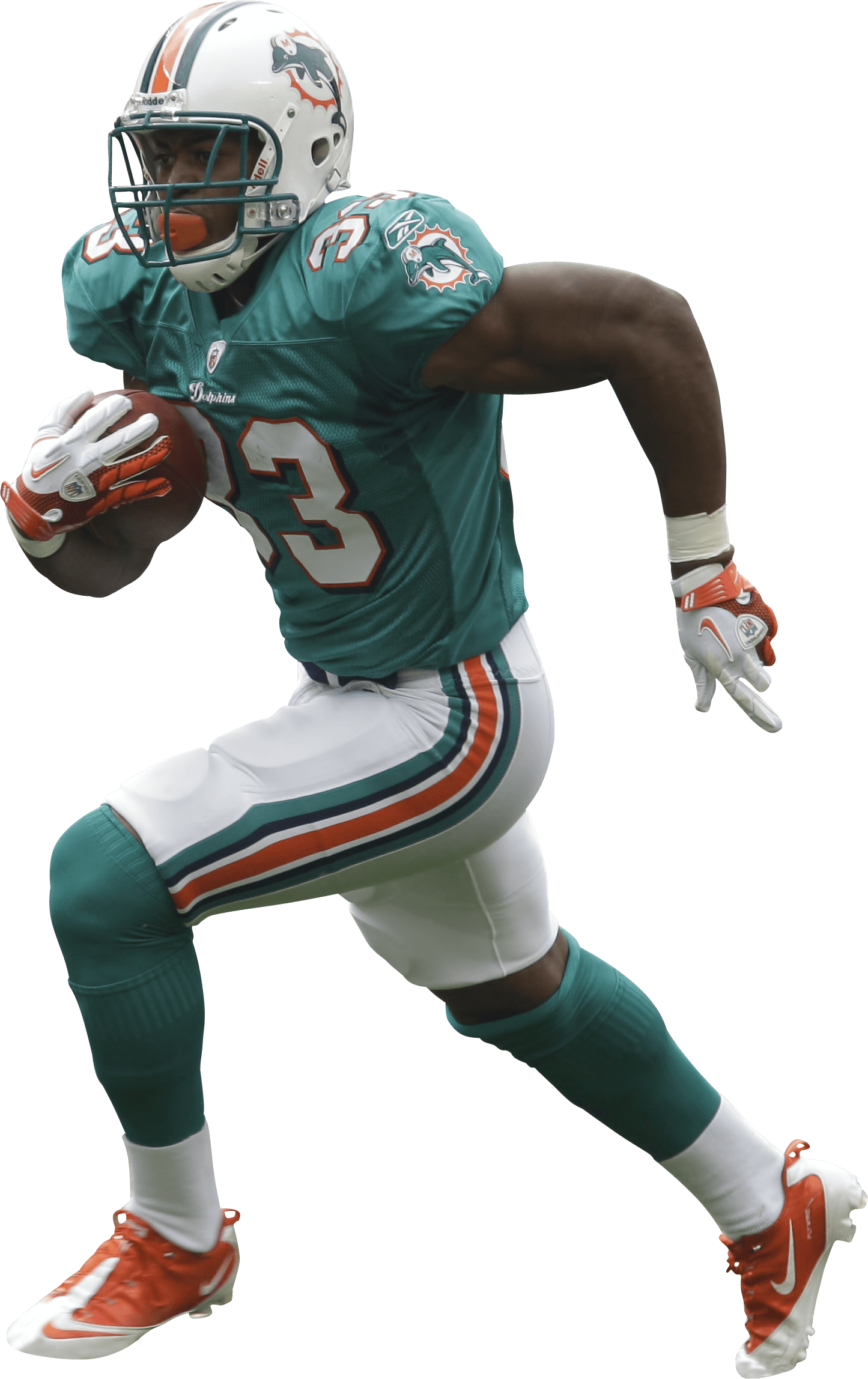 Miami Dolphins Helmet and Logo Lightning Experience