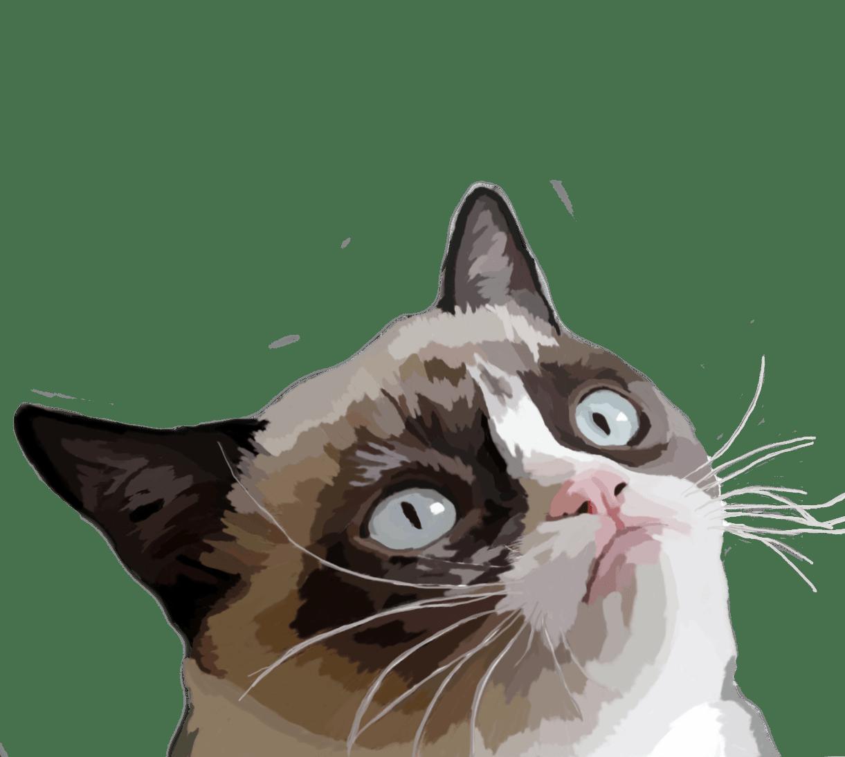 clipart grumpy cat - photo #31
