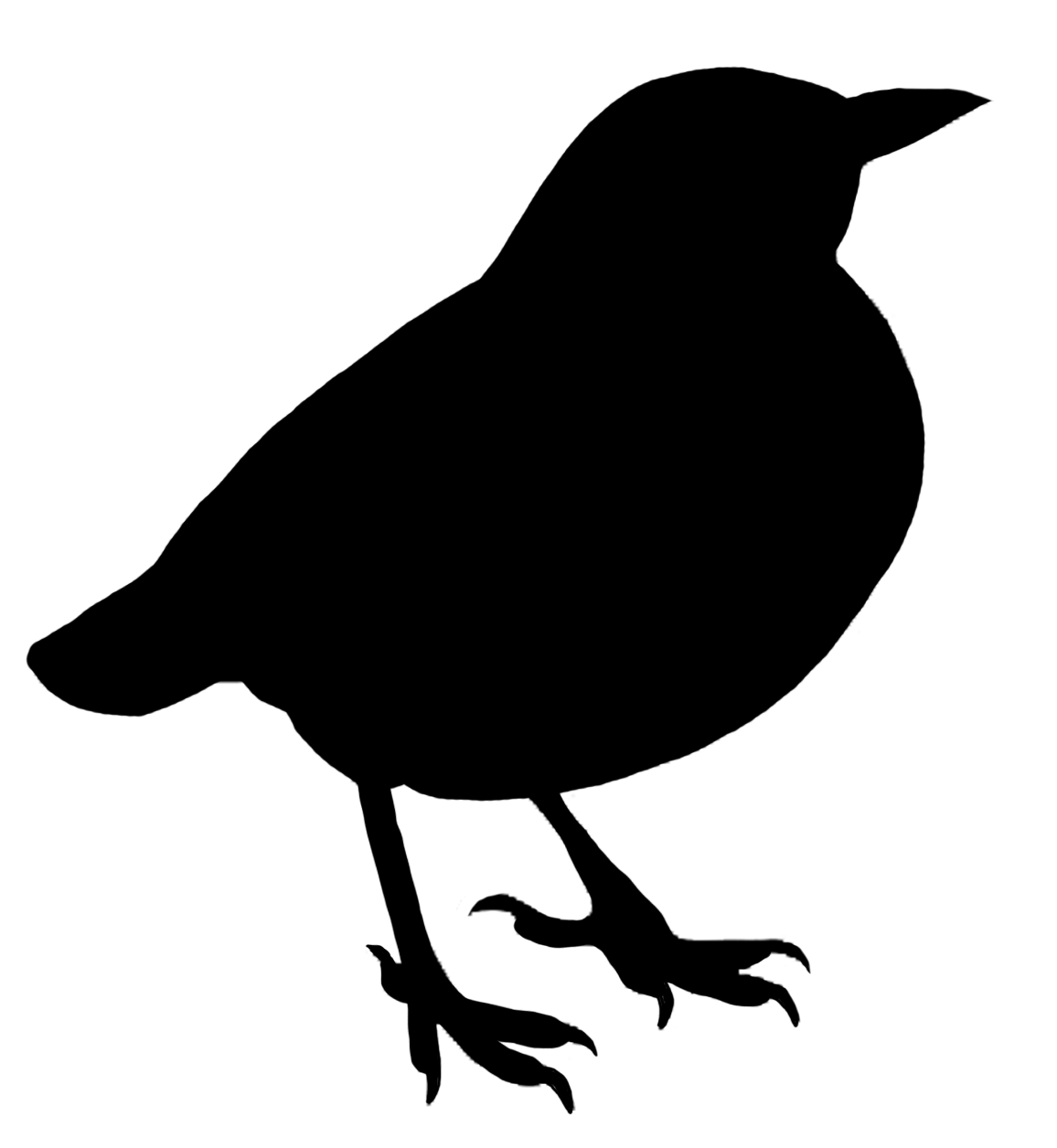 Bird transparent. Silhouette clipart png stickpng