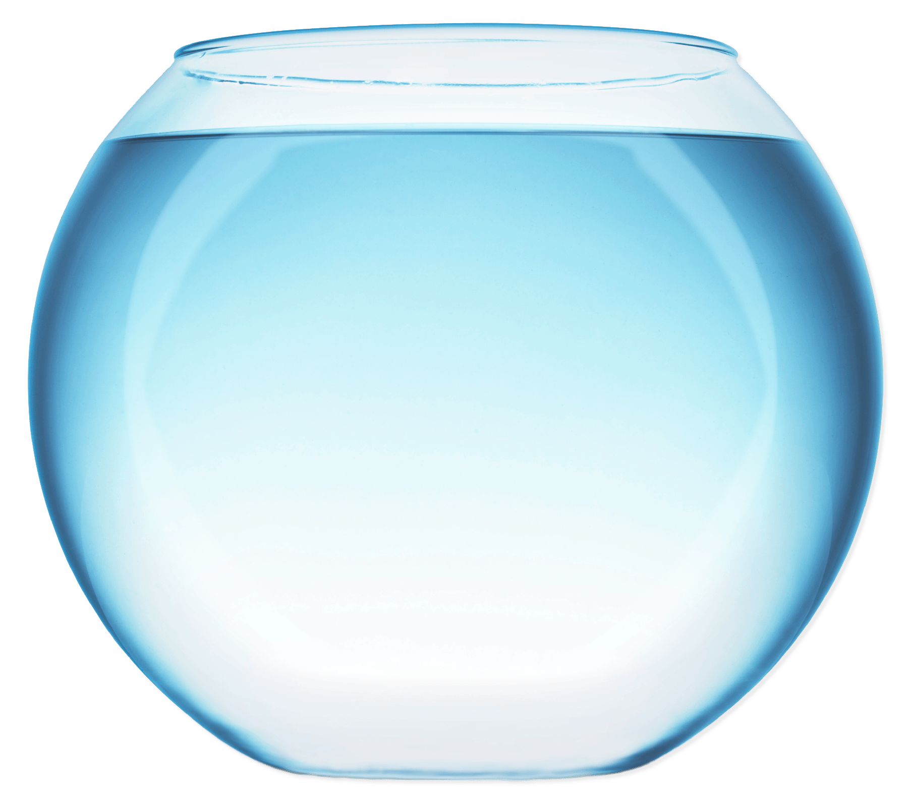 Fish bowl with water transparent png stickpng for Fish bowl fish