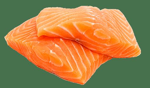 Resultado de imagen para salmon png