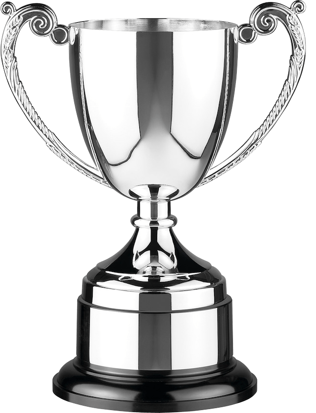 Silver Cup Transparent PNG
