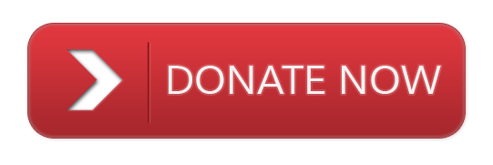 Image result for donate now button red