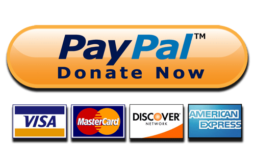 Image result for paypal donate now button