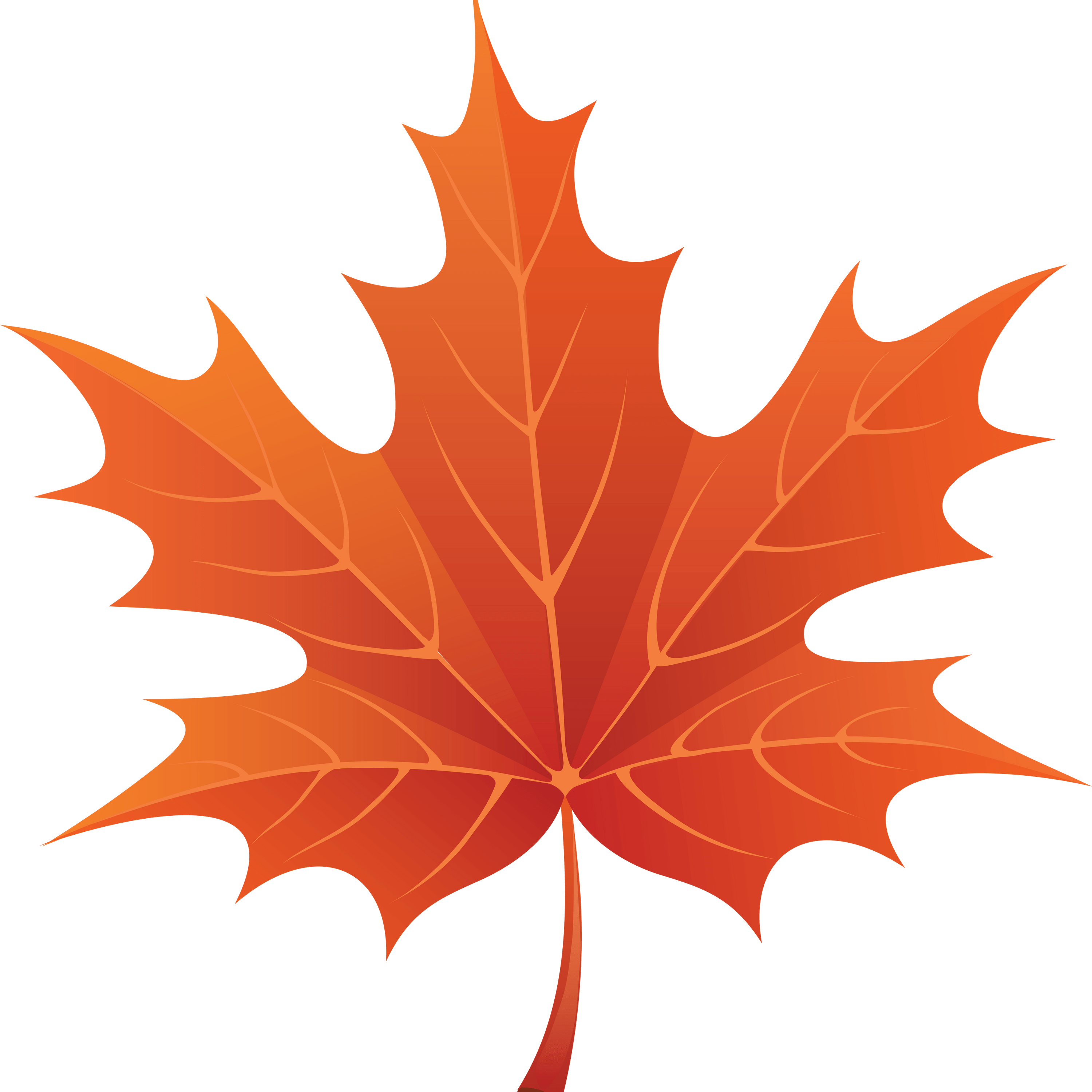maple leaf The maple leaf is the characteristic leaf of the maple tree, and is the most widely  recognized national symbol of canada contents 1 history of use in.