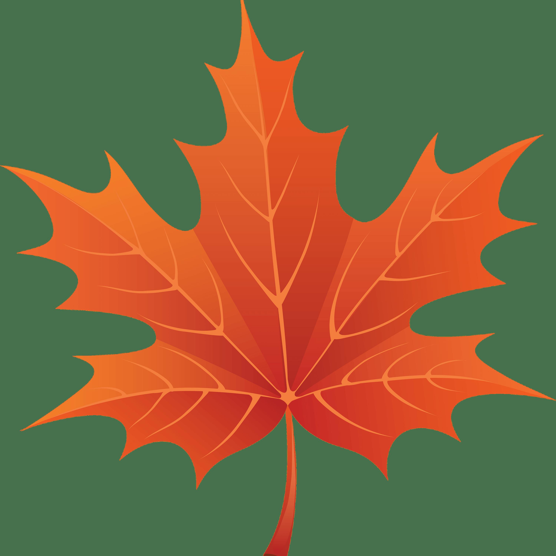 Brown Maple Leaf Transparent Png Stickpng