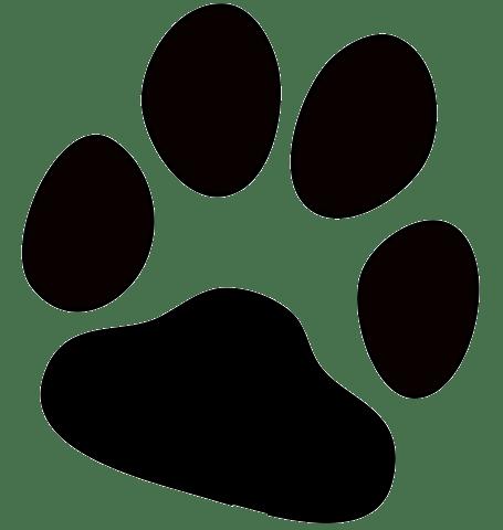 Dog Paw Print transparent PNG - StickPNG