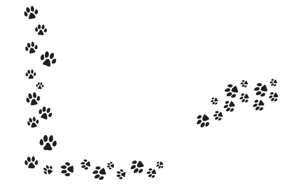 Series Of Paw Prints transparent PNG - StickPNG