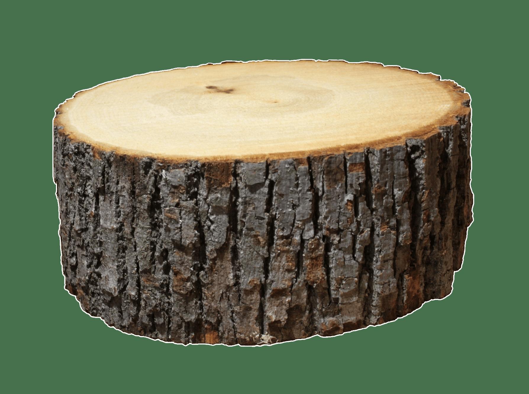 Log section transparent png stickpng