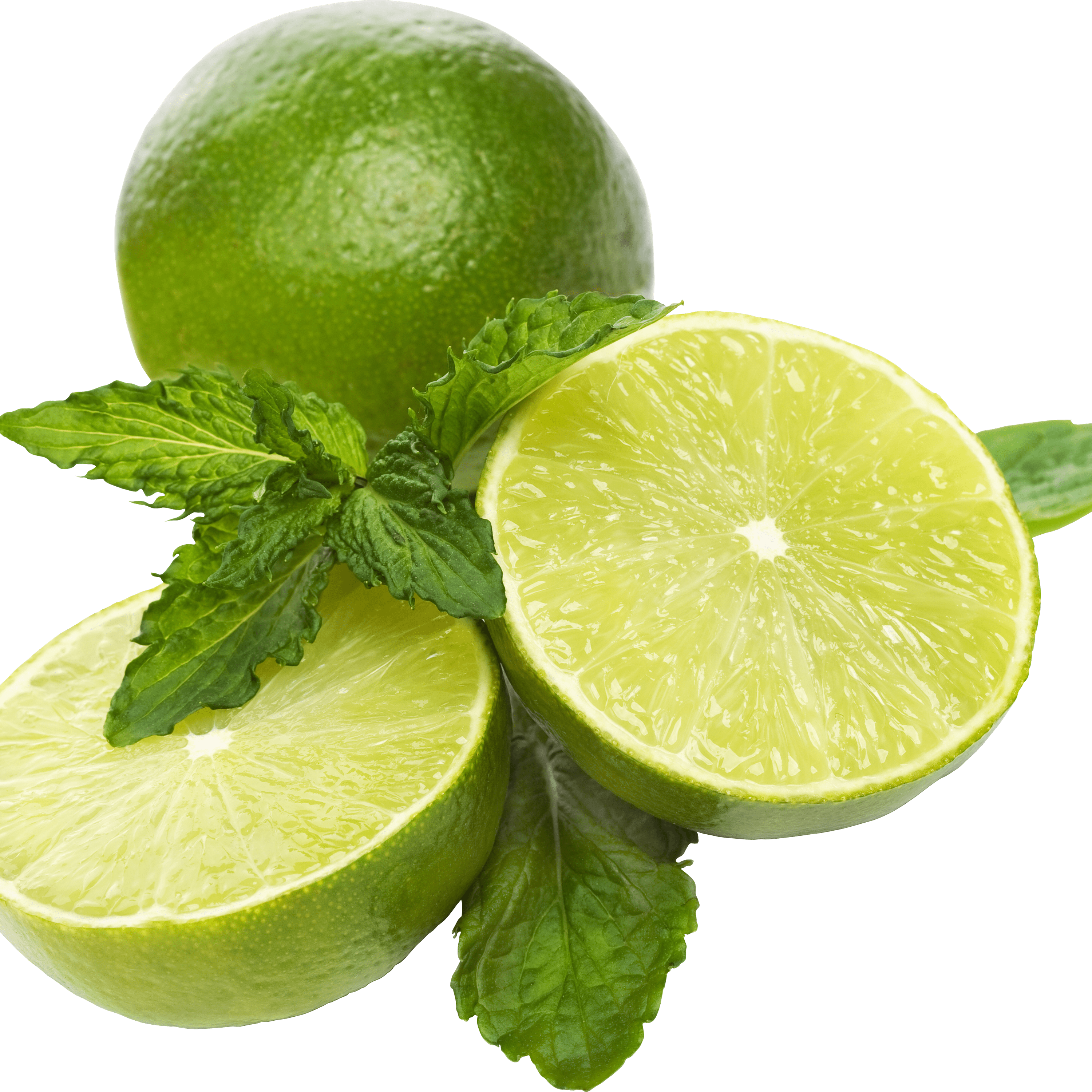 Lime Slice Png | www.pixshark.com - Images Galleries With ...