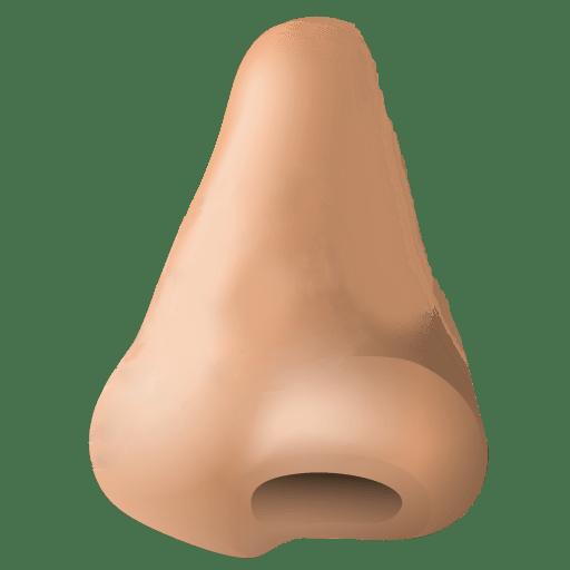 human nose clipart transparent png stickpng rh stickpng com nose clipart black and white nose clip art images