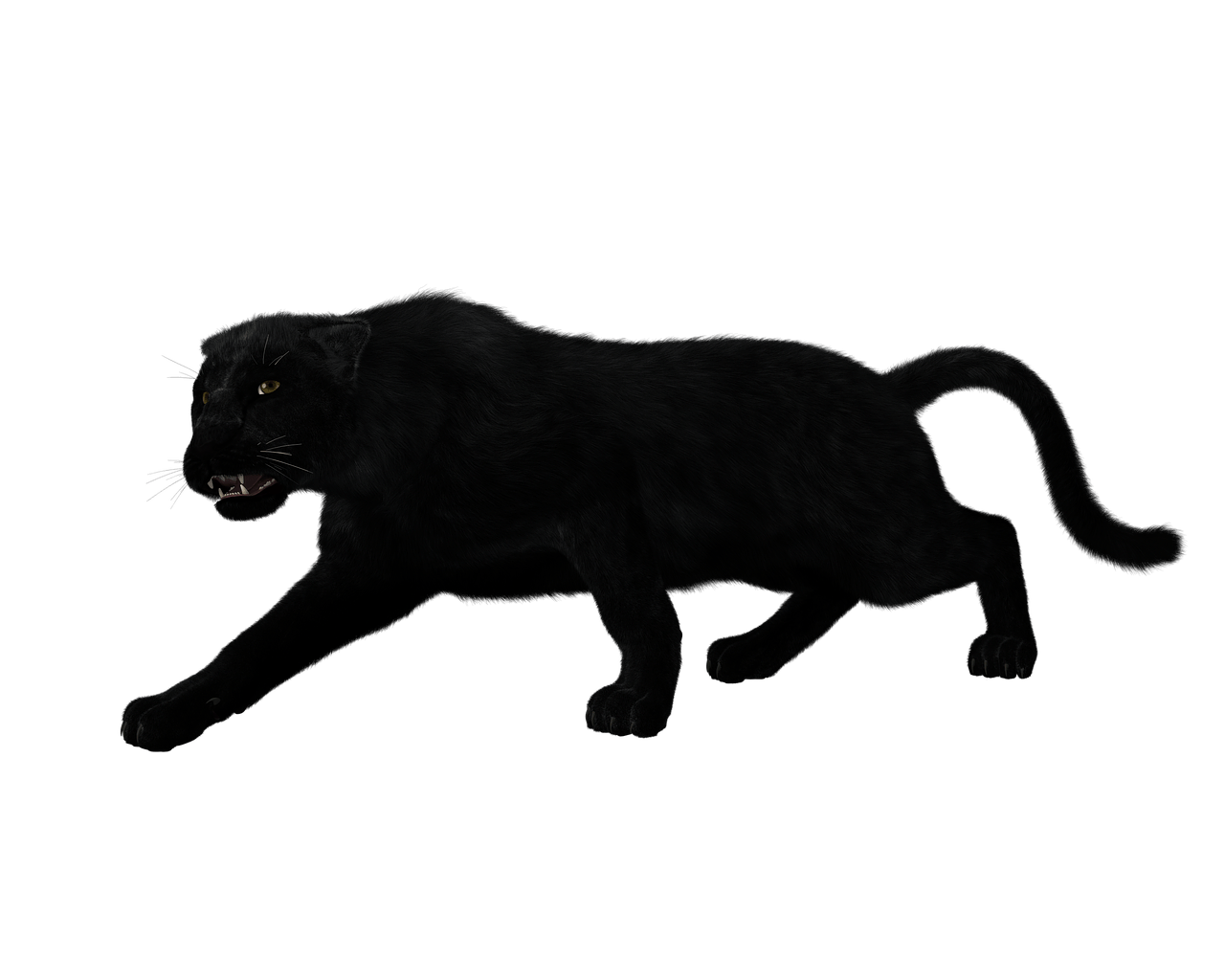 Black panther full body
