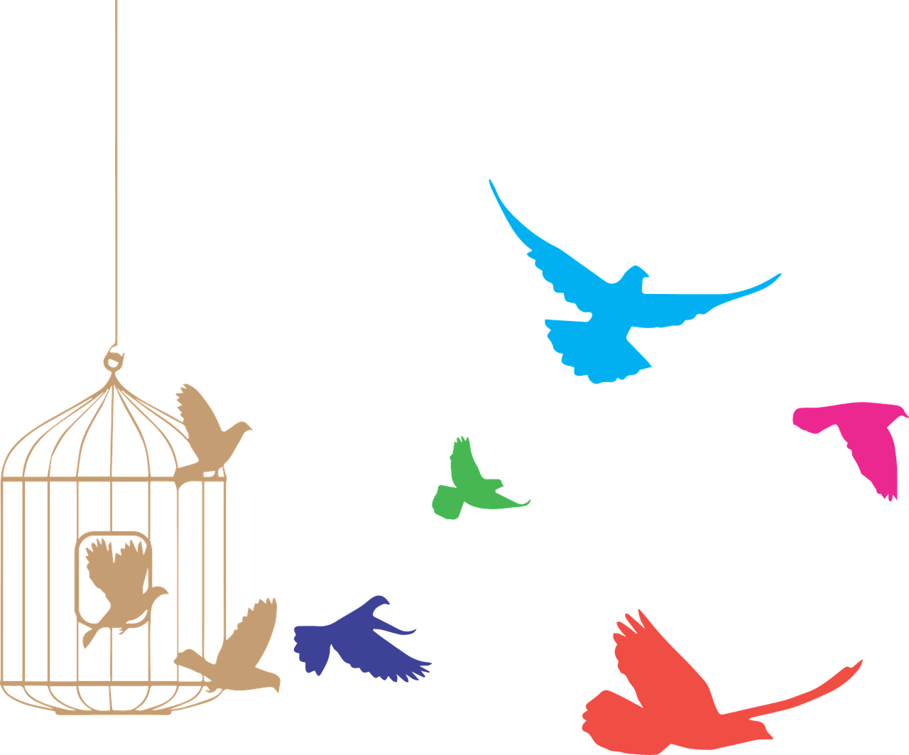 Birds flying. From cage clipart transparent