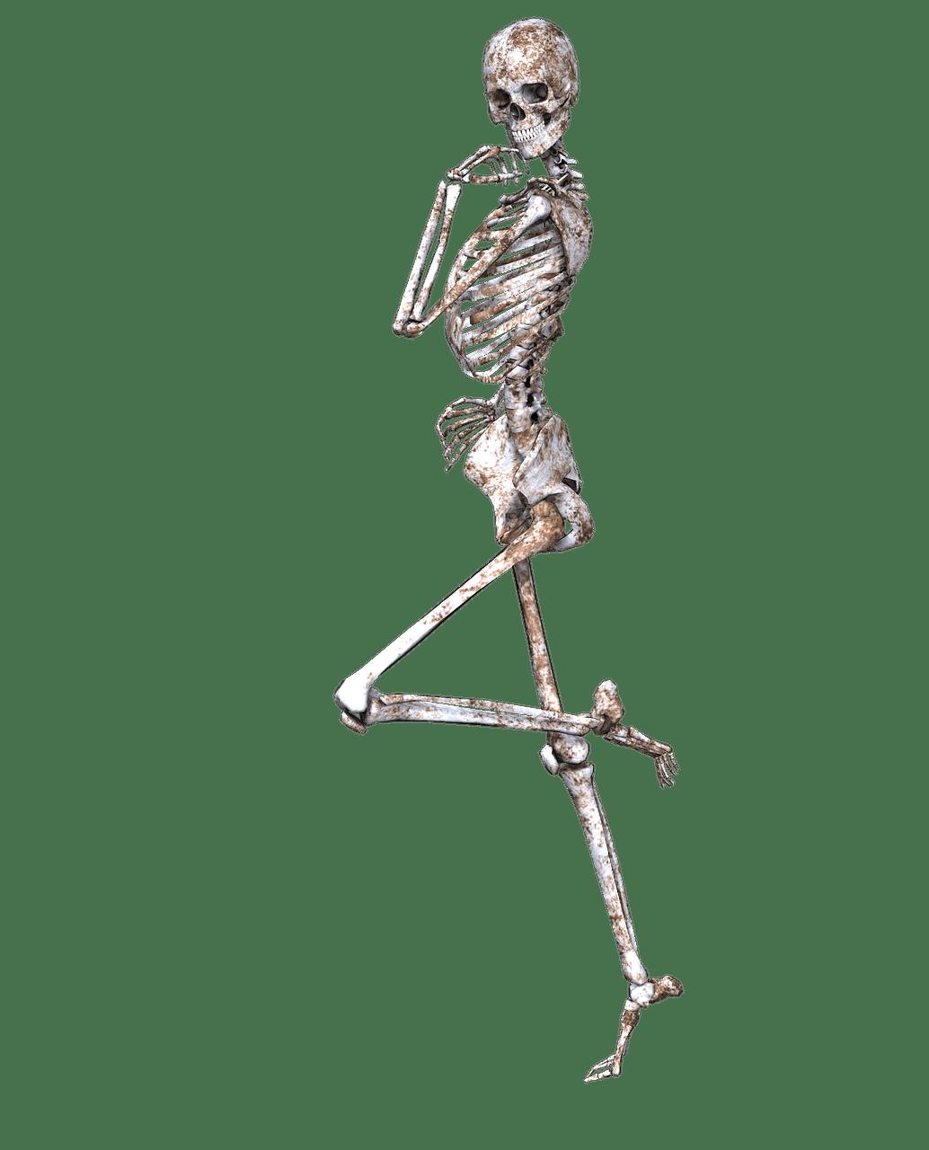 Skeleton On One Leg Transparent Png Stickpng