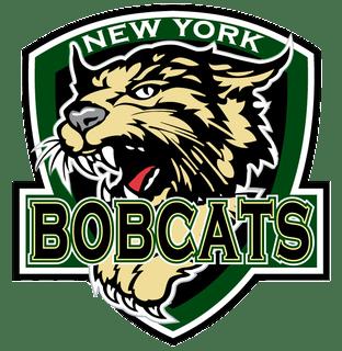 New York Bobcats Logo Transparent Png Stickpng