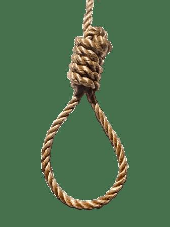 a photo of a noose