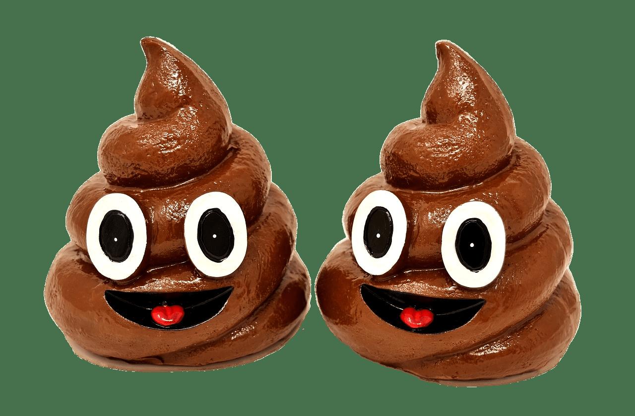 Poop Duo Transparent Png Stickpng