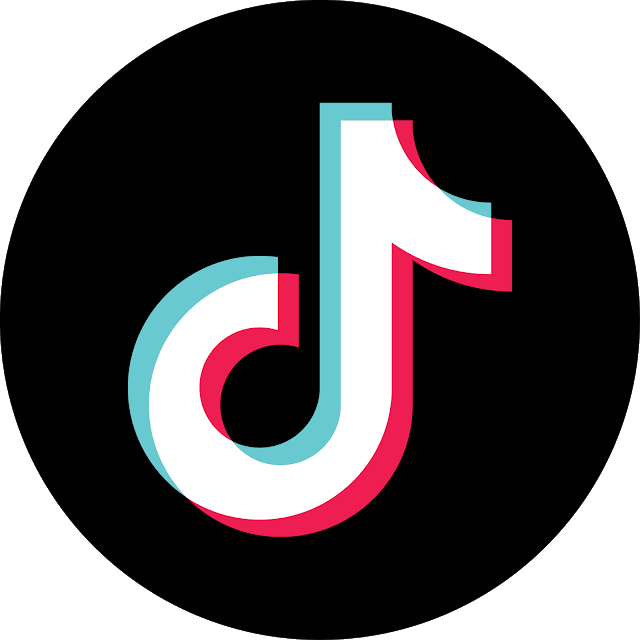 Tik Tok icône ronde PNG transparents - StickPNG