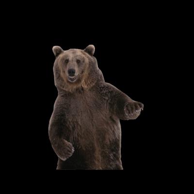 Dancing bear x clip - 4 4