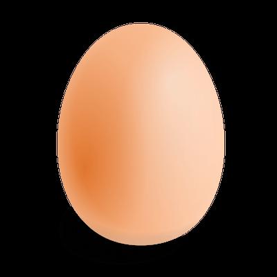 Single Egg Transparent Png Stickpng