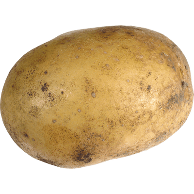 Group of potatoes transparent png stickpng - What to do with potatoes ...