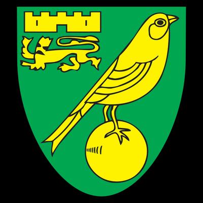 Leicester City Logo transparent PNG - StickPNG