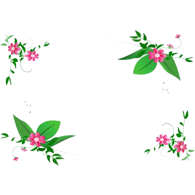 Flowers Corner Frame Transparent Png Stickpng