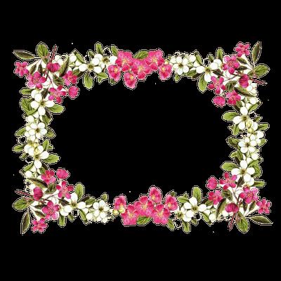 Flowers Frame Rose
