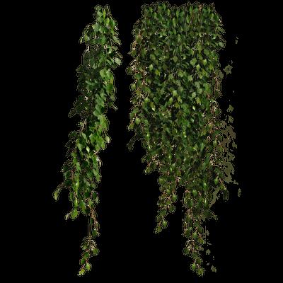 Arbustos Y Ramas Imagen Png Transparente Página2 Stickpng
